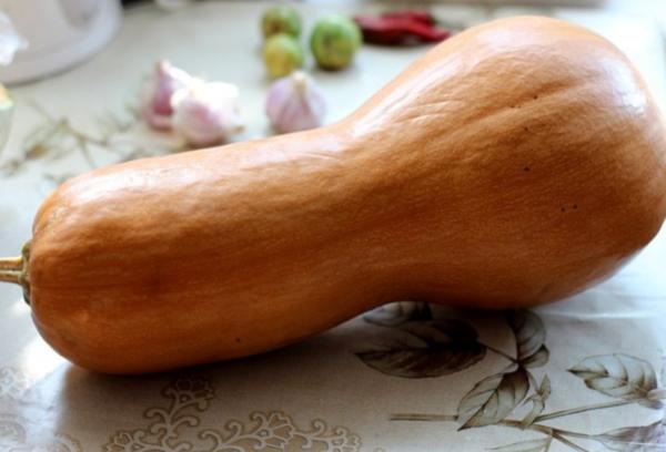 Длинная мускатная тыква