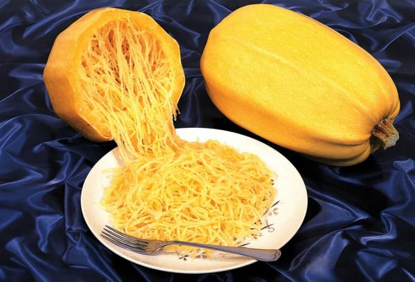 Кабачок лапшевидныйВермишелевый кабачокКабачок сорт спагетти